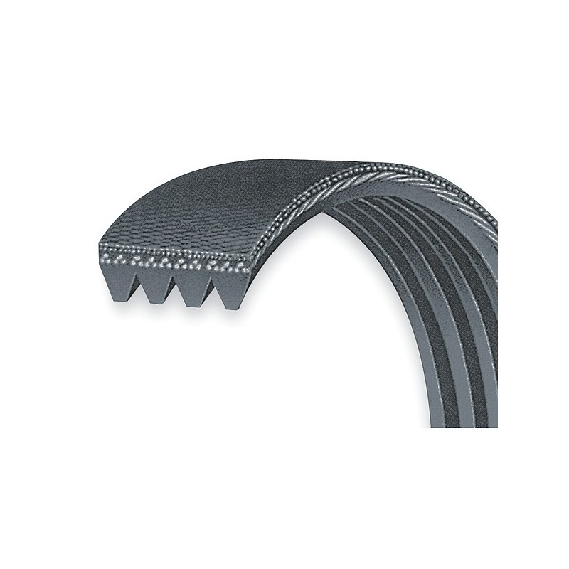 courroie b tonni re hutchinson f4pj307 307pj4 307mm. Black Bedroom Furniture Sets. Home Design Ideas
